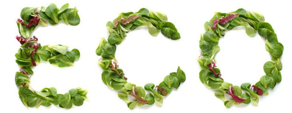 alimentacion-ecologica_lg